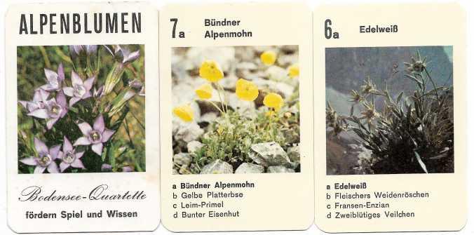 Alpenblumen-Quartett vom Bodensee