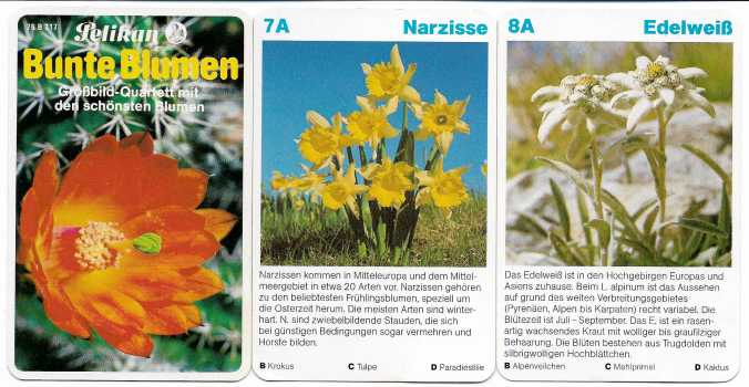 Spielkarten des Pelikan Blumen-Quartetts